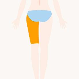 左腿(背面)