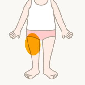 右腿(前面)